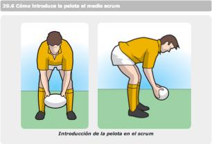 Cómo introducir la pelota en la melé
